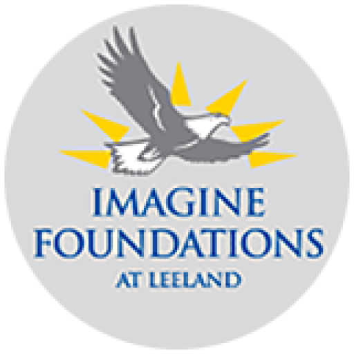 New ImagineLeeland